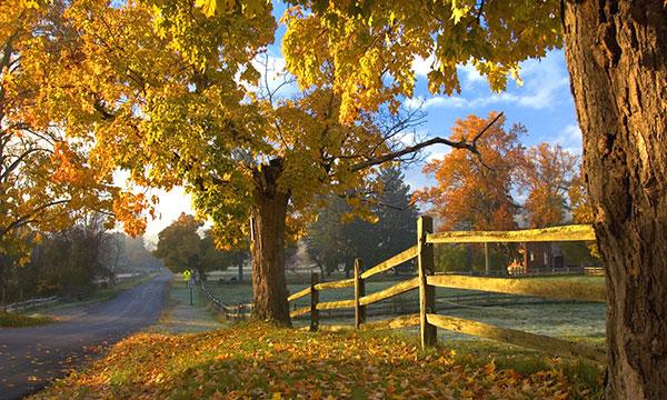 ohio fall foliage drive aol lifestyle