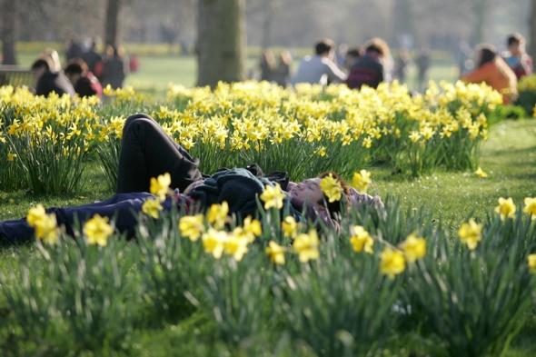 uk-weather-forecast-spring-sunshine-heatwave