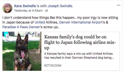 Luego de la muerte de un perrito en un avión, ahora United llevó a otro hasta Japón por