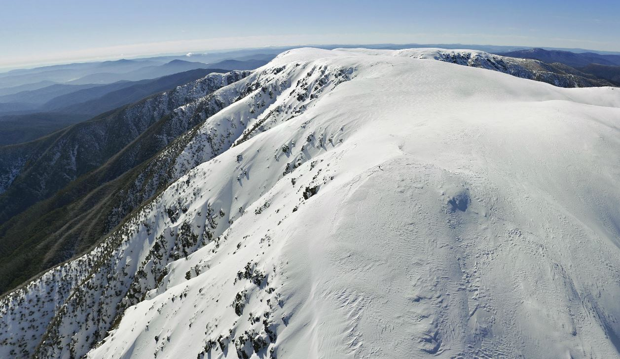 Mt Bogong, at 1986m, is Victoria's highest peak. It has a long flat summit but steep flanks which attract...