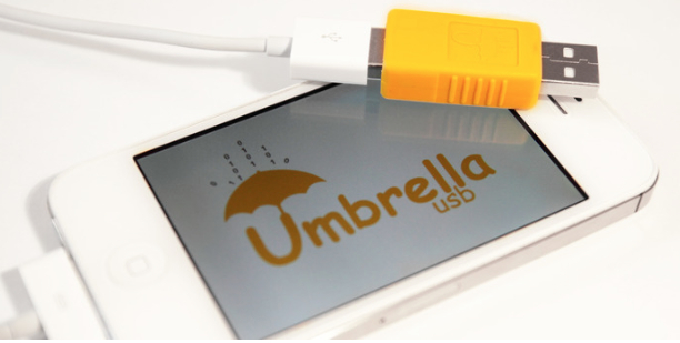 Umbrella USB security device