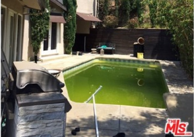 wes scantlin swimming pool
