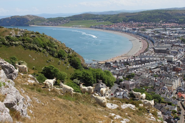 Llandudno voted Britain's best place to rent a holiday pad