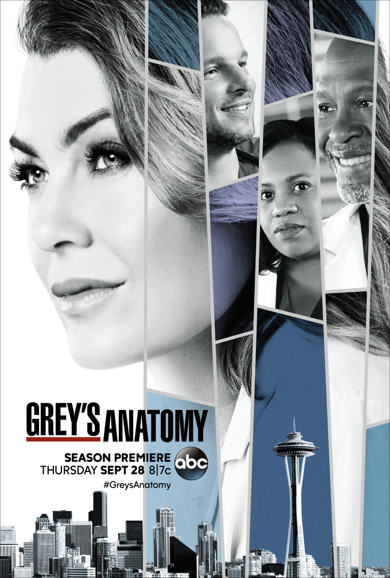 Image result for grey's anatomy season 14 poster