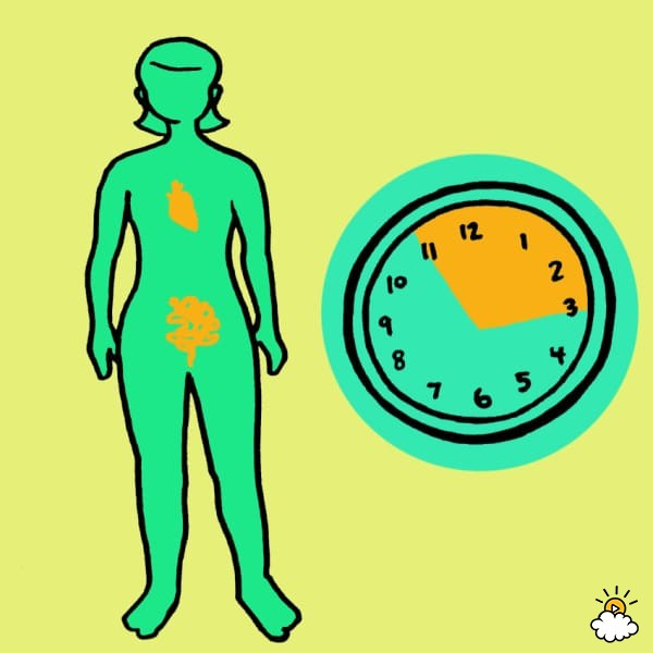 embeddedIMG_WhatYourBodyIsTryingToTellYouByWakingYouUpAtTheSameTimeEveryNight_850px_9-600x600 - Waking at the same time each night reveals details about your health - Health and Food