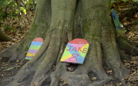 Woodland authorities crack down on fairy doors