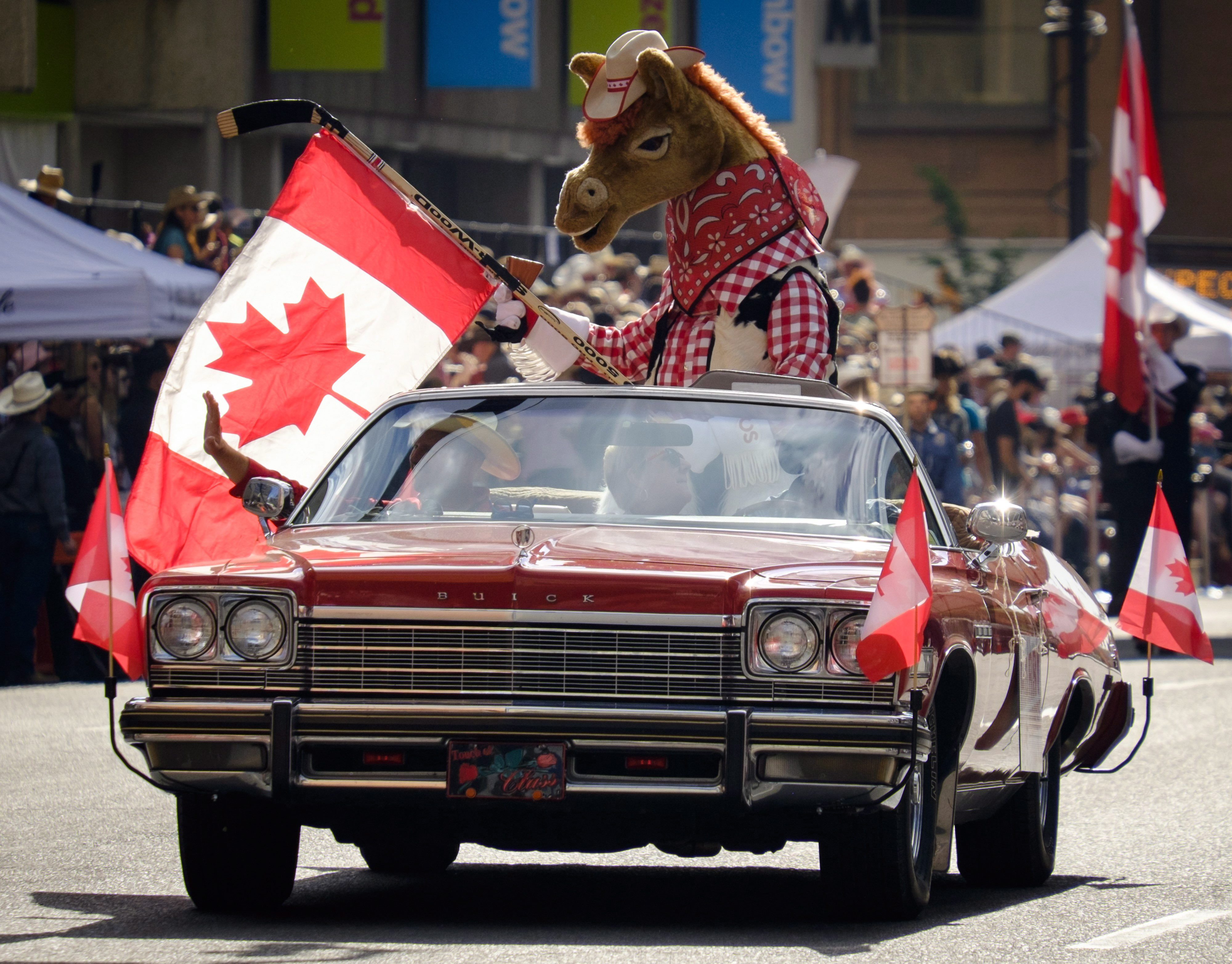 Stampede mascot Harry the Horse leads off the Calgary Stampede parade in Calgary, Friday, July 7,