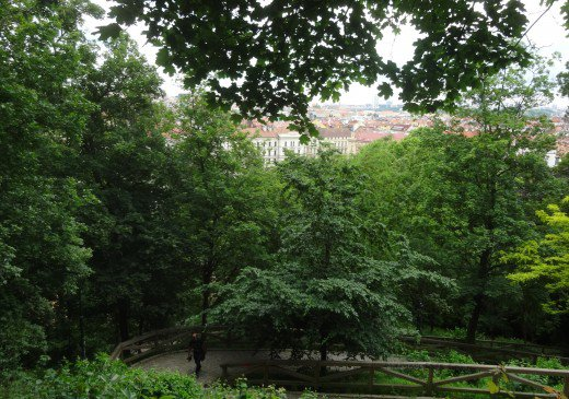 View from Petrin Hill in Prague