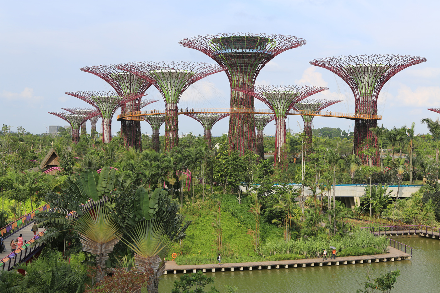 Artificial Supertrees sit alongside imported flora in Singapore's 'Gardens by the Bay,' a park that sits on land reclaimed from the ocean.