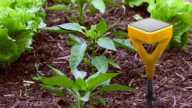 . Edyn s smart gardening system gives your plants exactly what they need