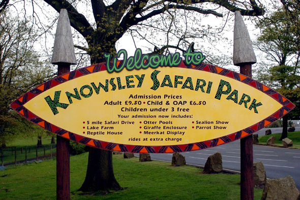 baby attacked by vulture at knowsley safari