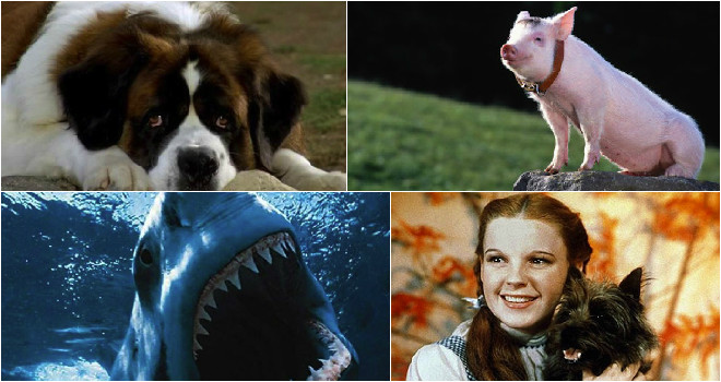 Animals That Deserved Oscars