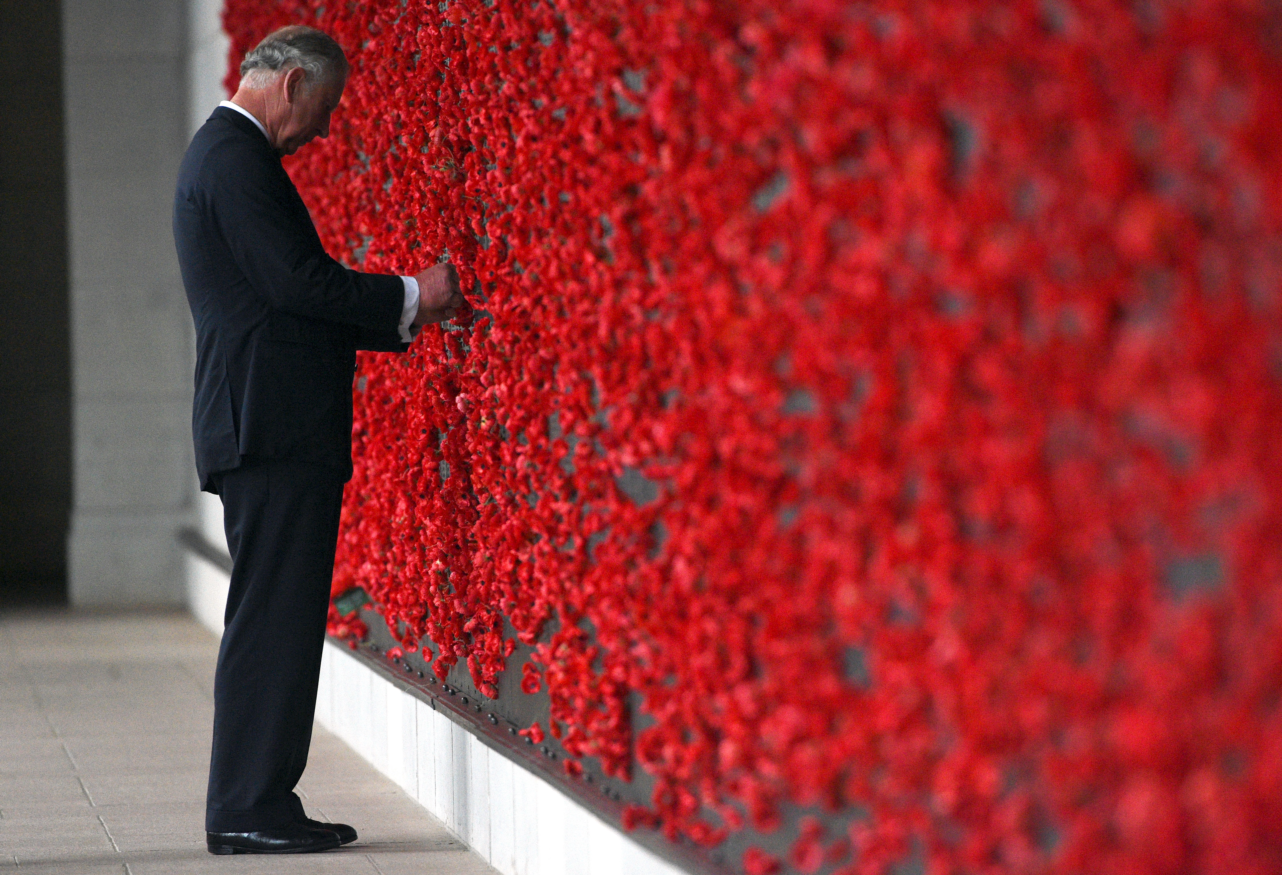 Prince Charles placing a poppy onto the Roll of Honour wall during the 2015 Remembrance Day ceremony...