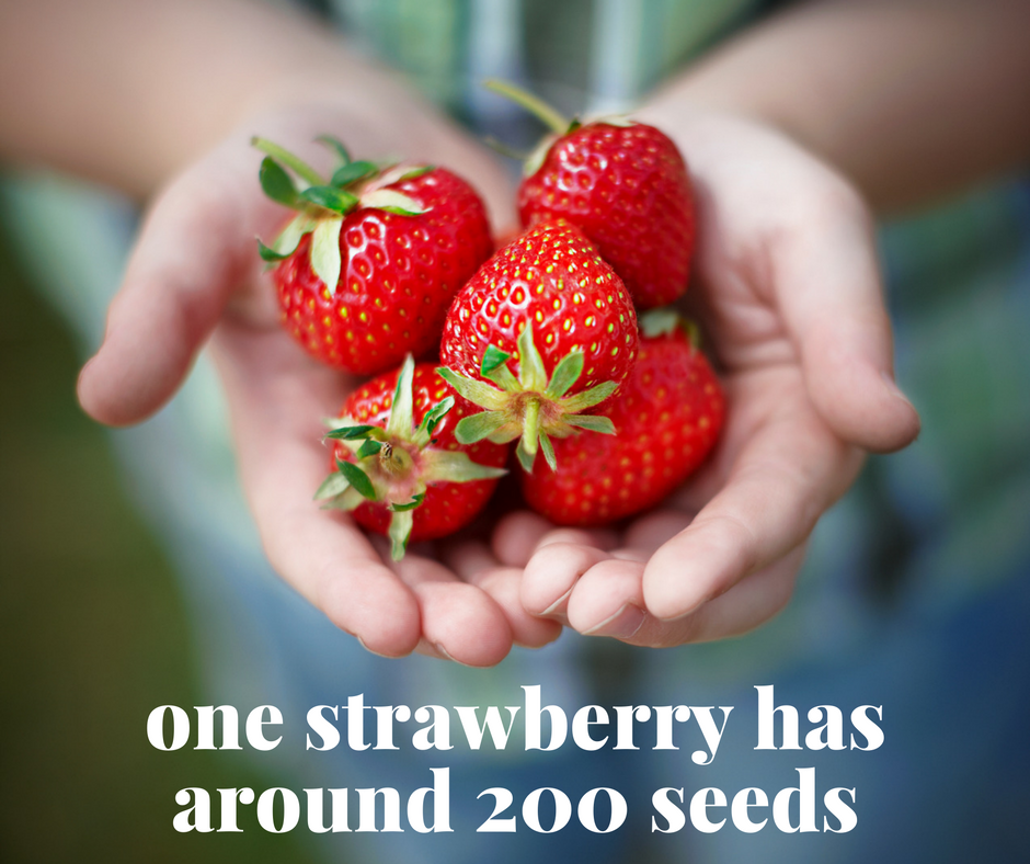 15 surprising facts and tips about fruit and veggies for Interesting facts about strawberries