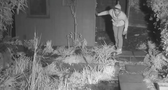 Burglar caught by Springwatch presenter's 'fox cam'