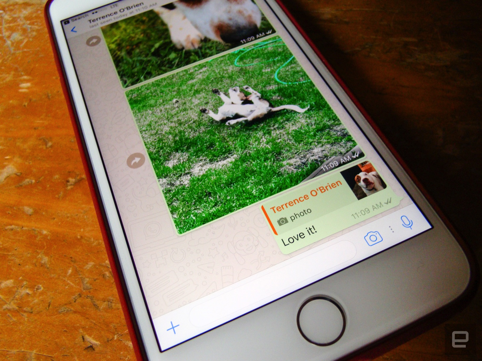 WhatsApp adds photo filters and albums to make chats more visual