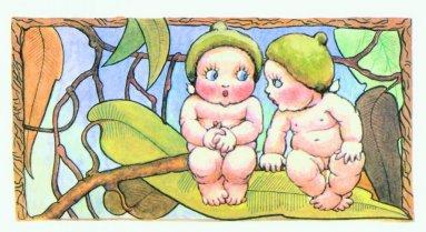 May Gibbs' Gumnut Babies Turn