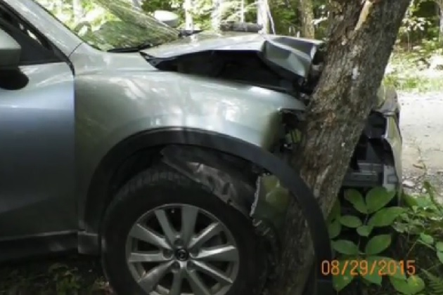 【ビデオ】米国で男性がクルマの運転中に自撮りをしようとして木に激突 友人達を病院送りに