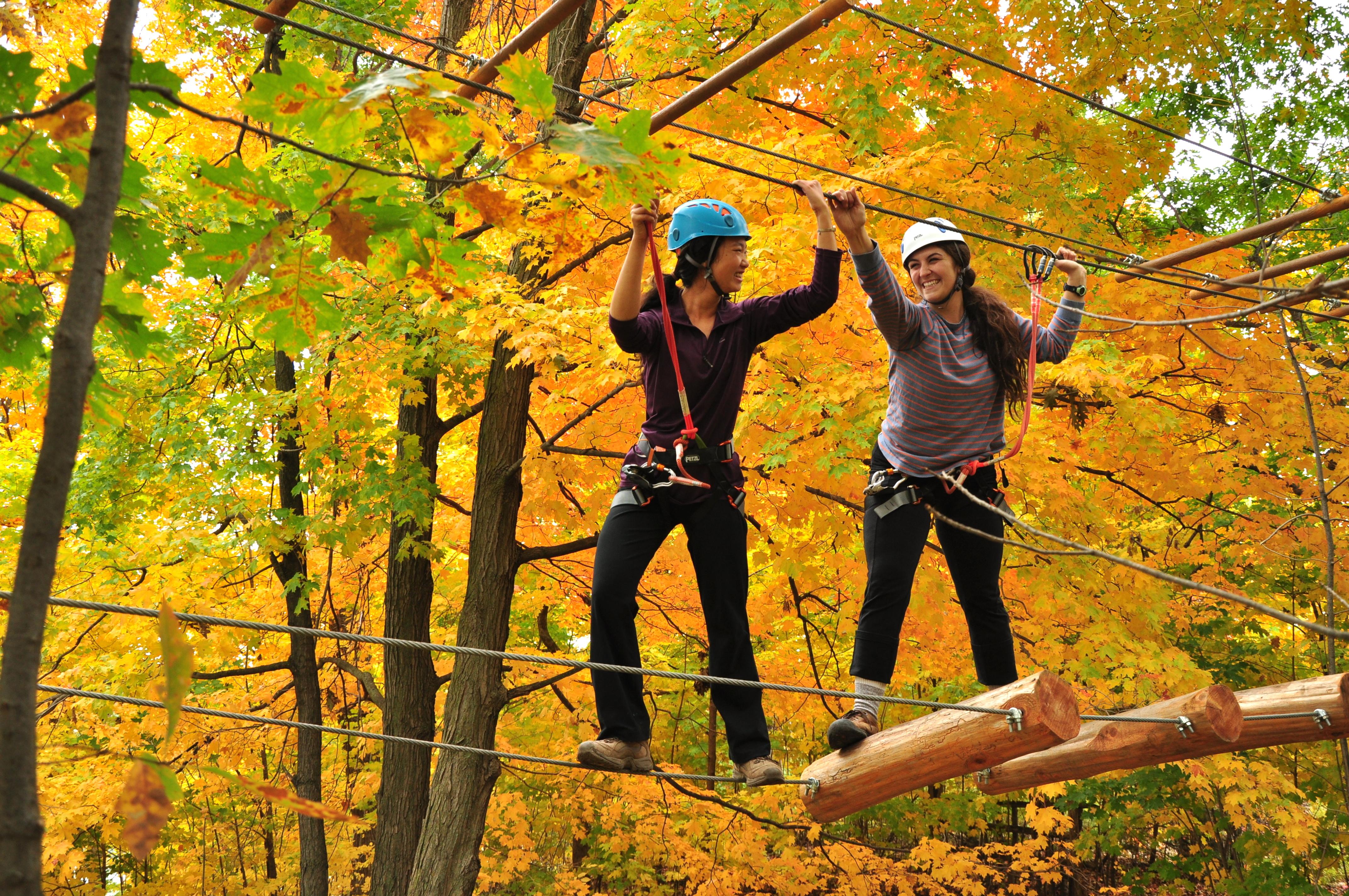 Treetop Trekking,