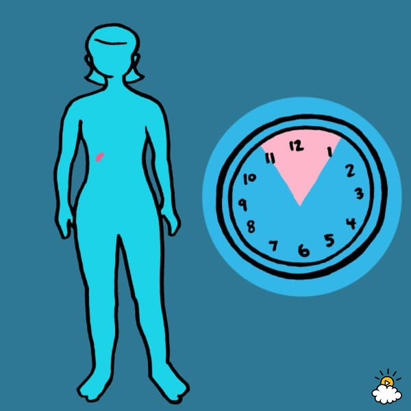 embeddedIMG_WhatYourBodyIsTryingToTellYouByWakingYouUpAtTheSameTimeEveryNight_850px_4-600x600 - Waking at the same time each night reveals details about your health - Health and Food