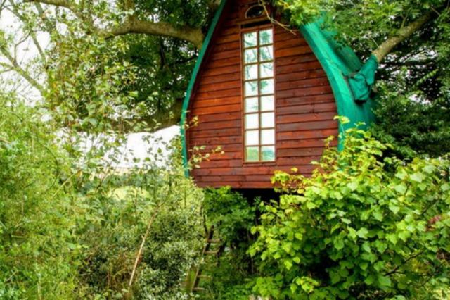 Cornwall treehouse