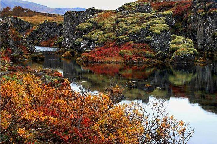 Thingvellir National Park is stunning all year