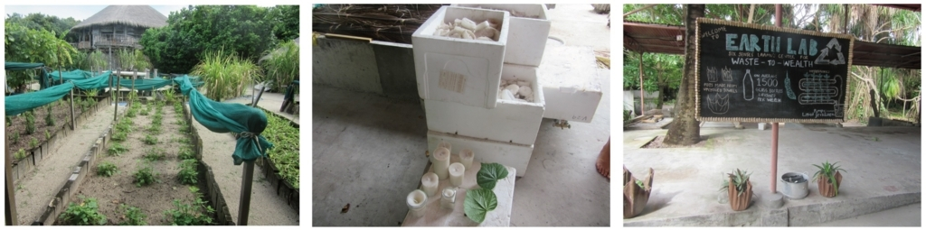 左:野菜をリゾート内の農園で栽培  中央:キャンドルを再利用  右:宿泊客を対象にしたエコ体験プロジェクトも。古くなったタオルで植木鉢に