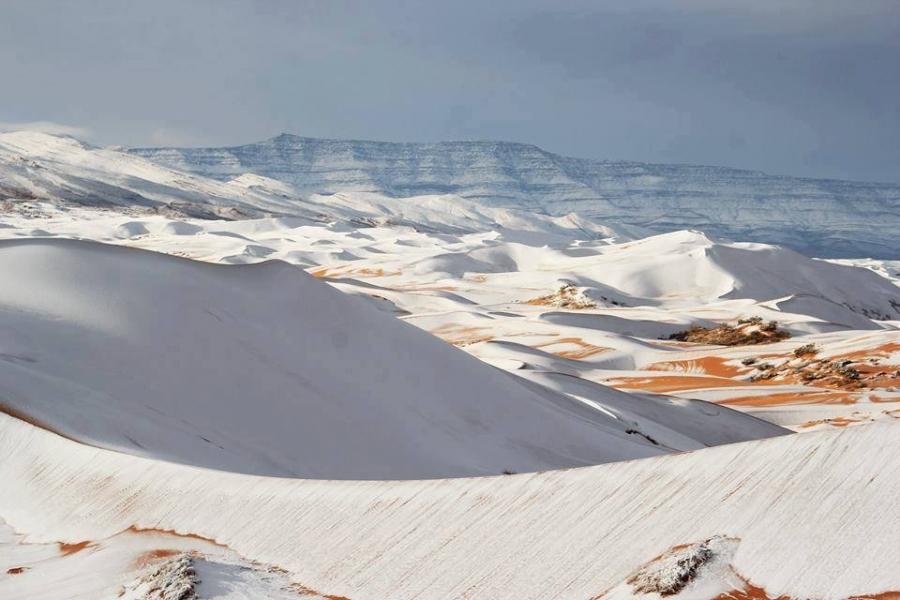 FOTOS: La sorprendente nevada en el desierto del