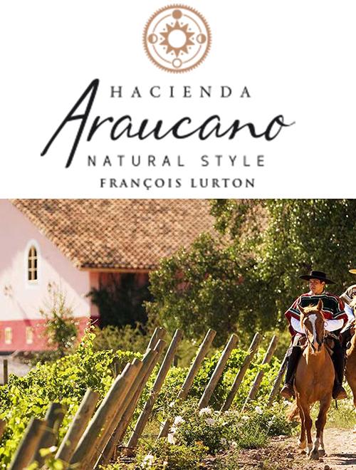 François Lurton, marchand de vin