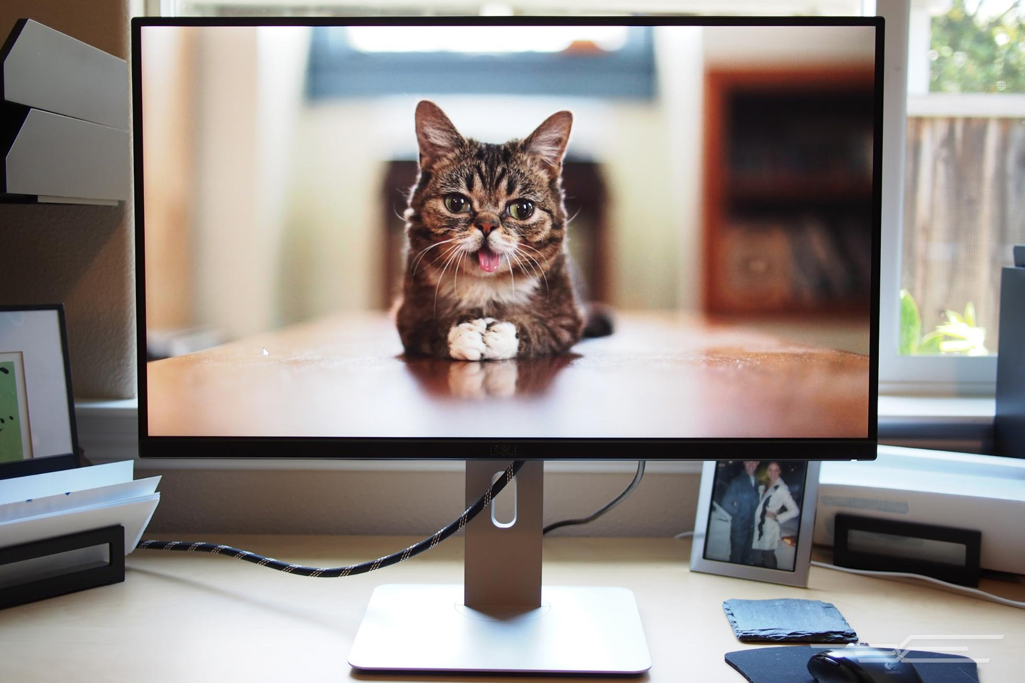 The best 24-inch monitor