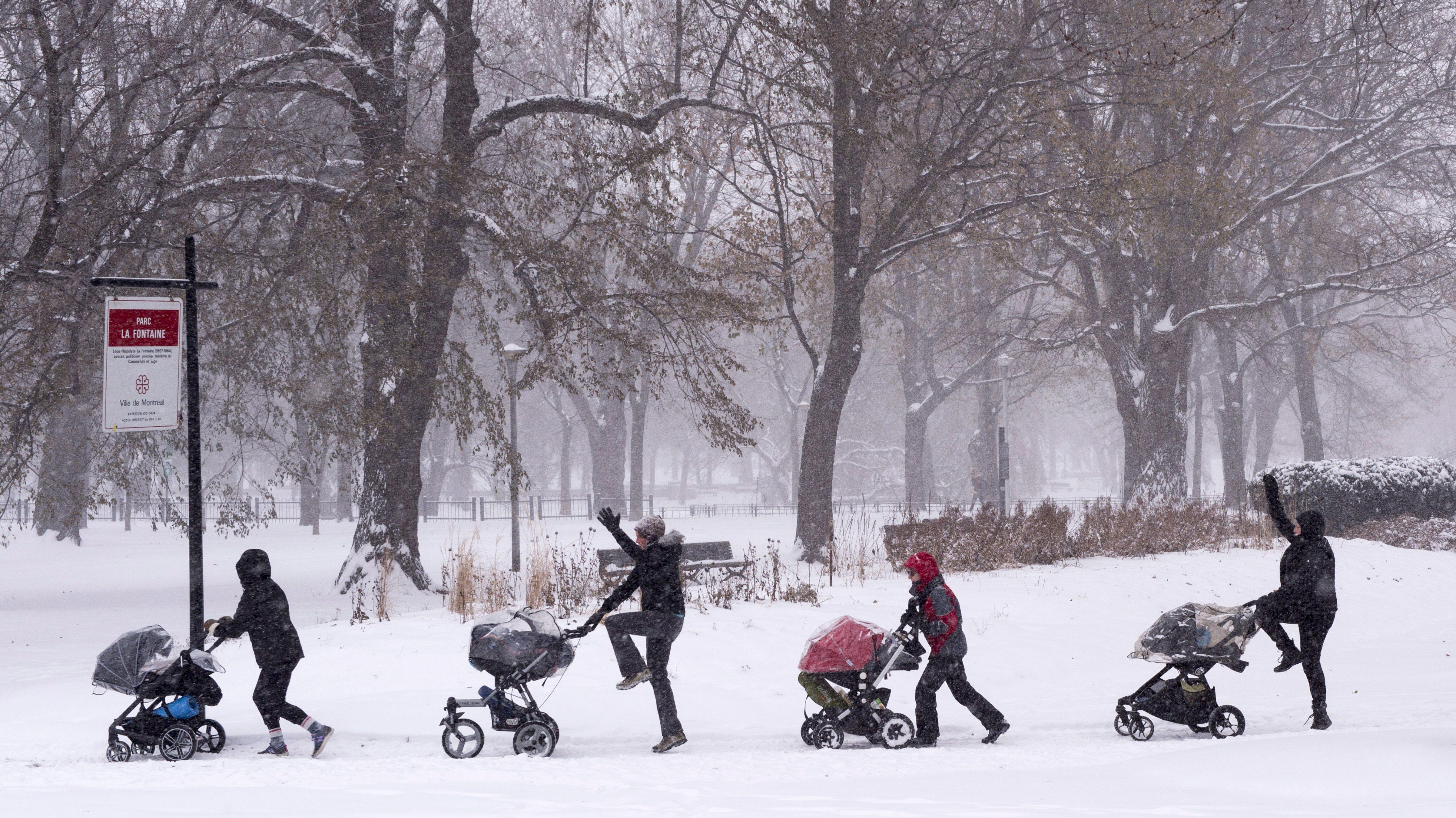 Des femmes se promènent avec leur poussette dans un parc de