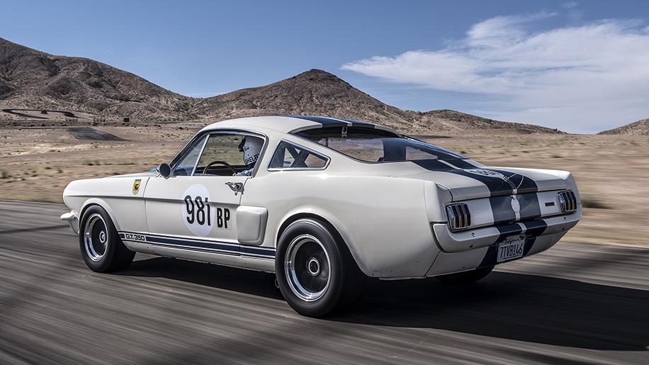 Original Venice Crew Shelby GT350R