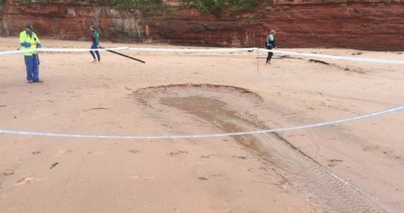 Mystery 15ft hole 'shooting out snails' appears on Devon beach