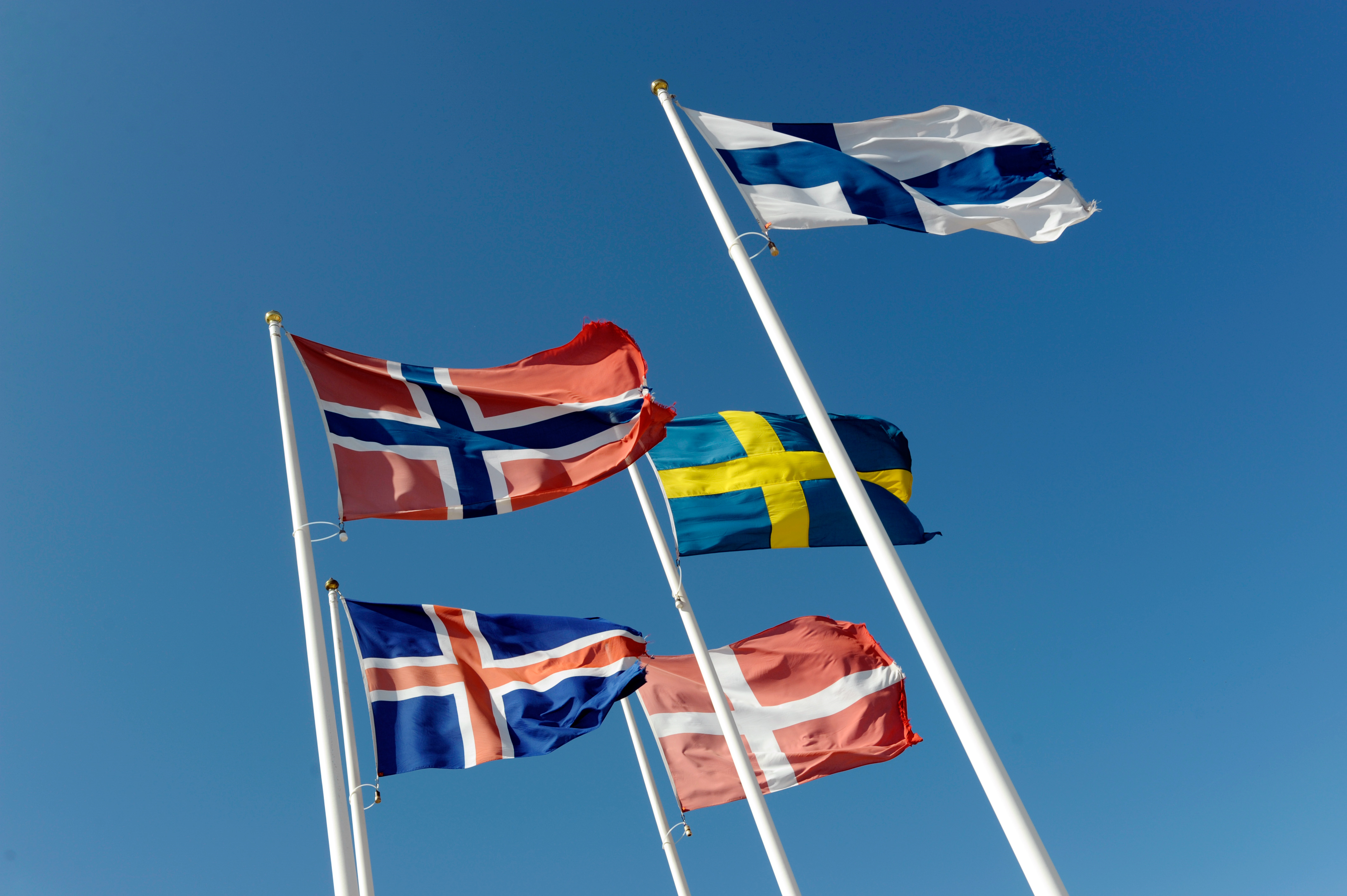 True North And True Nordic: New Opportunities For Global