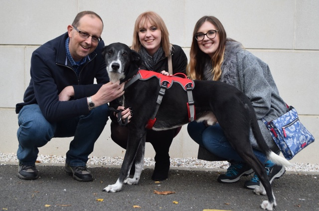 Britain's 'loneliest' dog finally gets a forever home