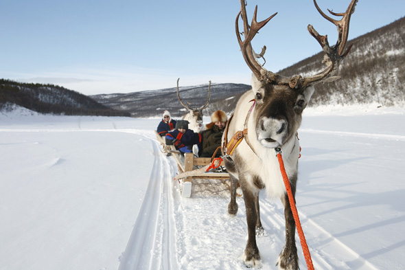 Christmas In Lapland Where To Go And What To Do Aol