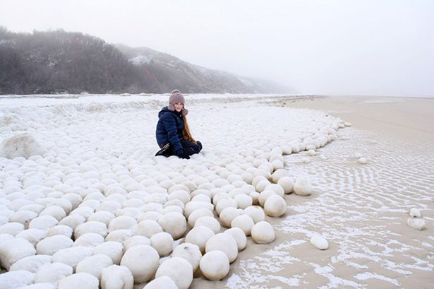 Giant natural snowballs appear on Russian beach