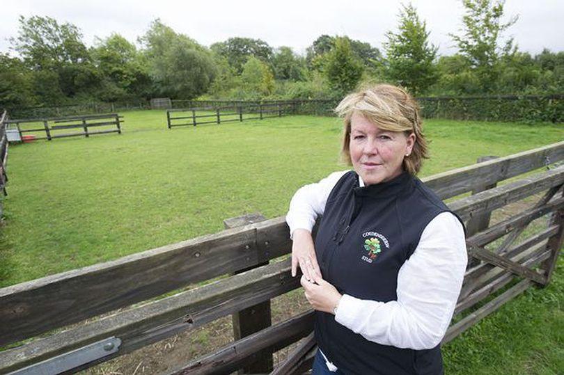 Landowner invites travellers to live on her land