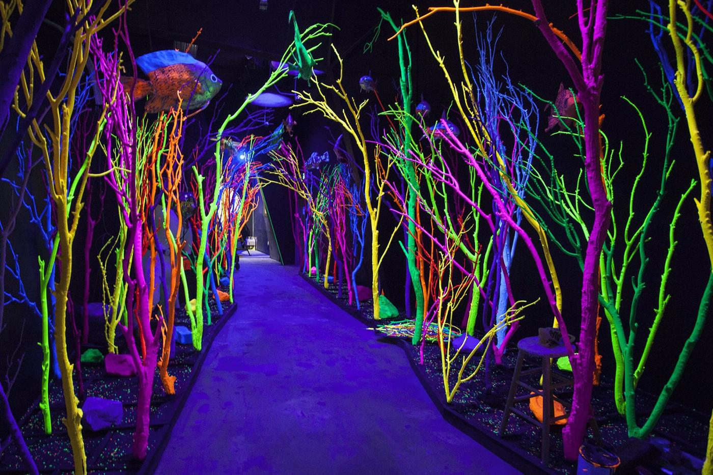 'The Aquarium', an installation by Matt King at 'House of Eternal Return'.