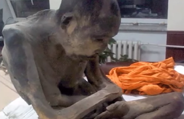 200-year-old mummified monk 'not dead, just meditating'