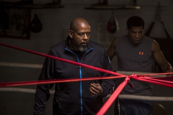 Billy gets down to some serious training at Tick's gym.  Boxing Coordintor Terry Claybon, FW
