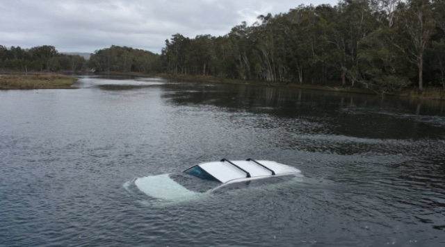 Man drives car into lake after giant spider jumps on arm