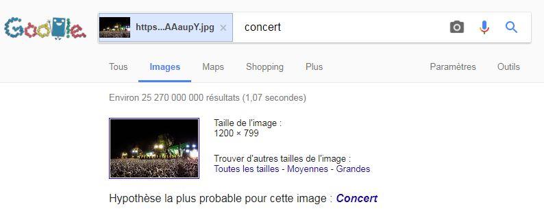 Vous voyez une foule dans un concert? Vous êtes