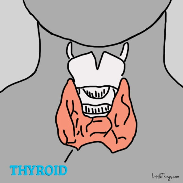12 signs there is something wrong with your thyroid gland