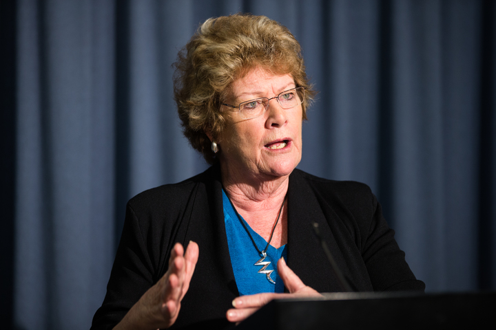 Health Minister Jillian Skinner addressing the media on the interim report into the Bankstown-Lidcombe...