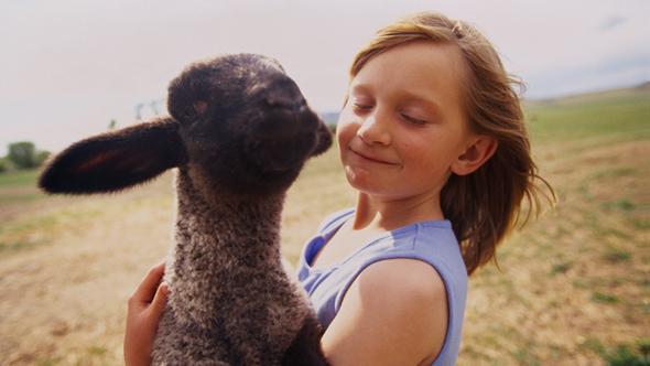 UK farm-stay holidays