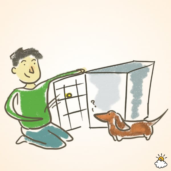 how to teach your dog tricks easy