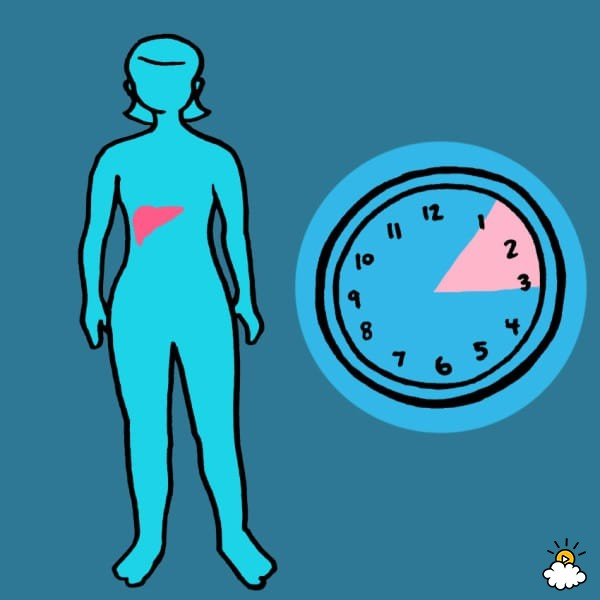 embeddedIMG_WhatYourBodyIsTryingToTellYouByWakingYouUpAtTheSameTimeEveryNight_850px_5-600x600 - Waking at the same time each night reveals details about your health - Health and Food