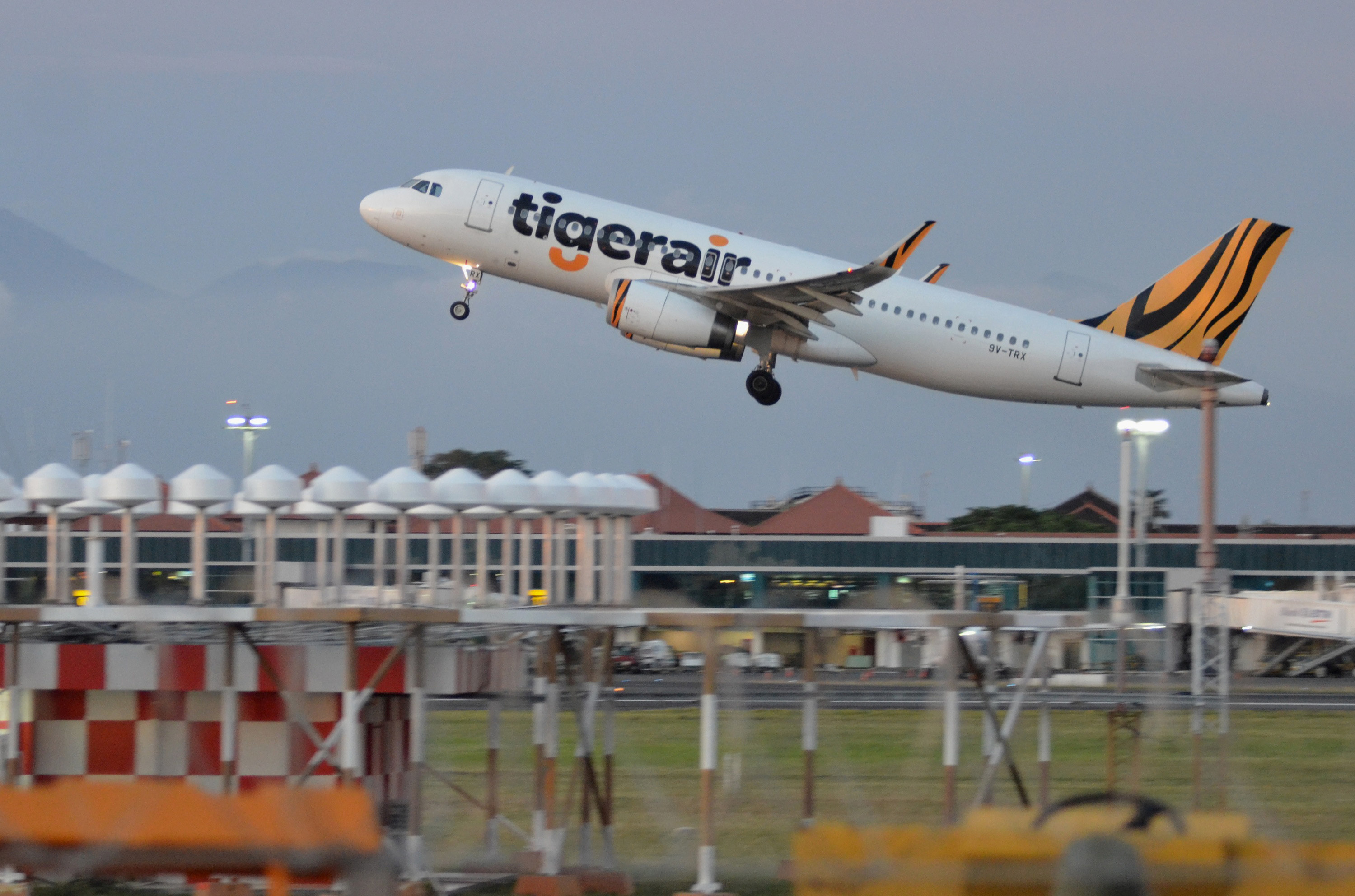Tigerair has yet to reveal when it will be able to resume flights in and out of