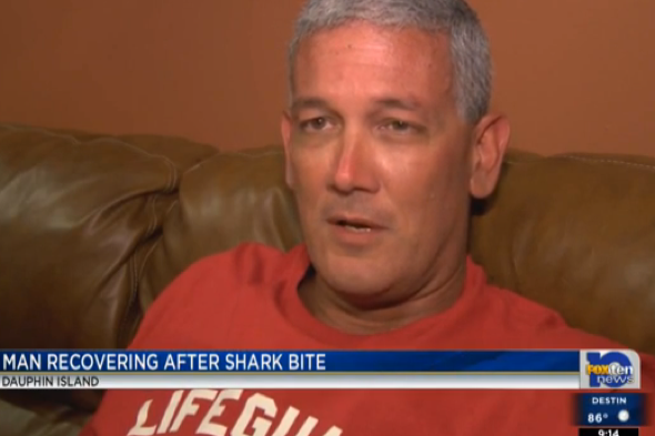 Man bitten by shark while fishing on Dauphin Island, Alabama